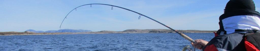 Bakkan Wahl - fiske
